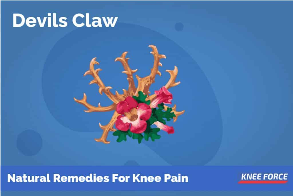Devils Claw Is An Angel Of Natural Pain Relief