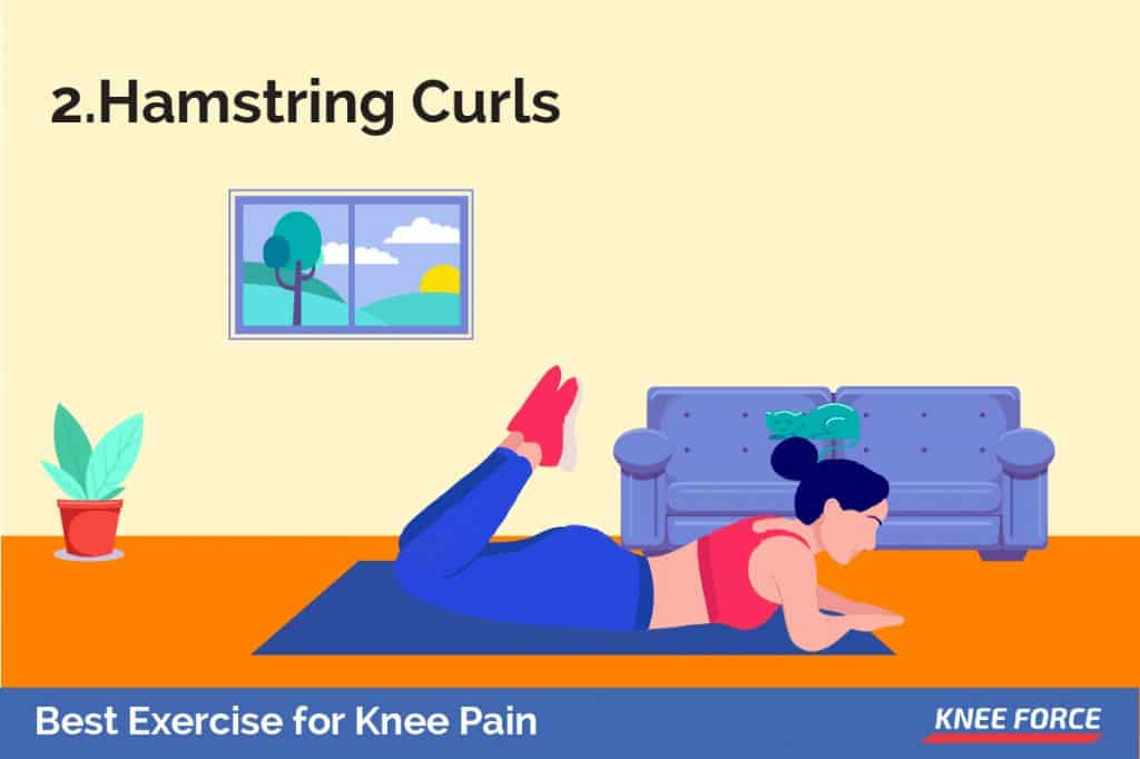 The hamstrings are the muscles that lay along the back of your thigh. Again they assist to support the knee joint and avoid injury.
